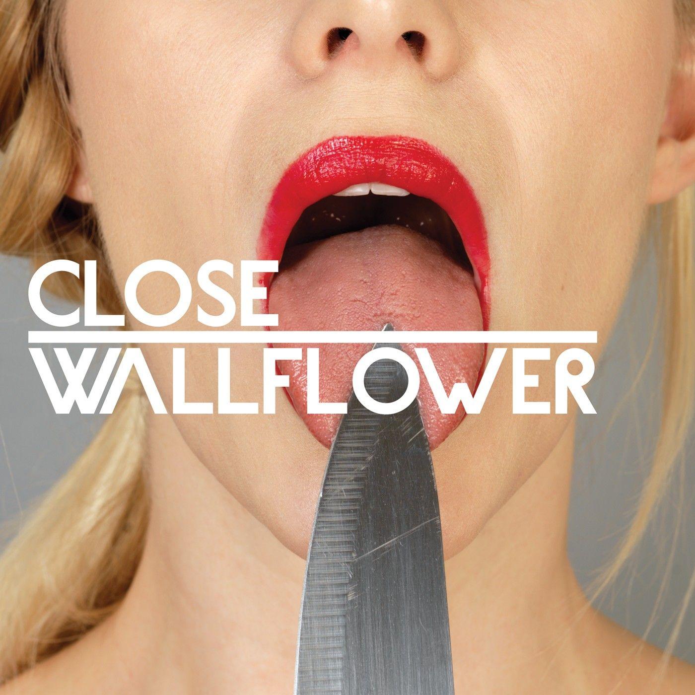 wallflower-pack.jpg
