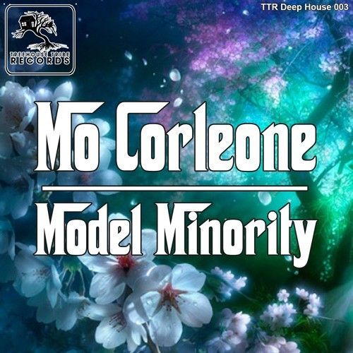modelminority.jpg