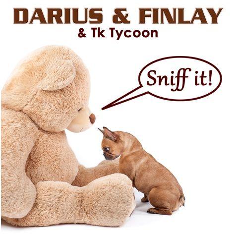 darius_finlay_tk_tycoon_-_sniff_it.jpg