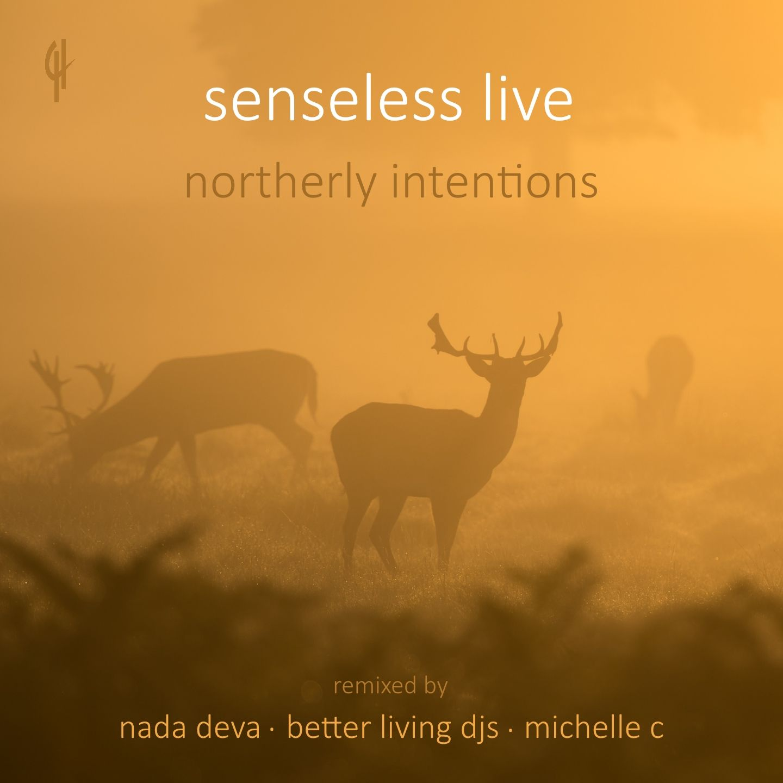 senseless_live_-_northerly_intentions.jpg