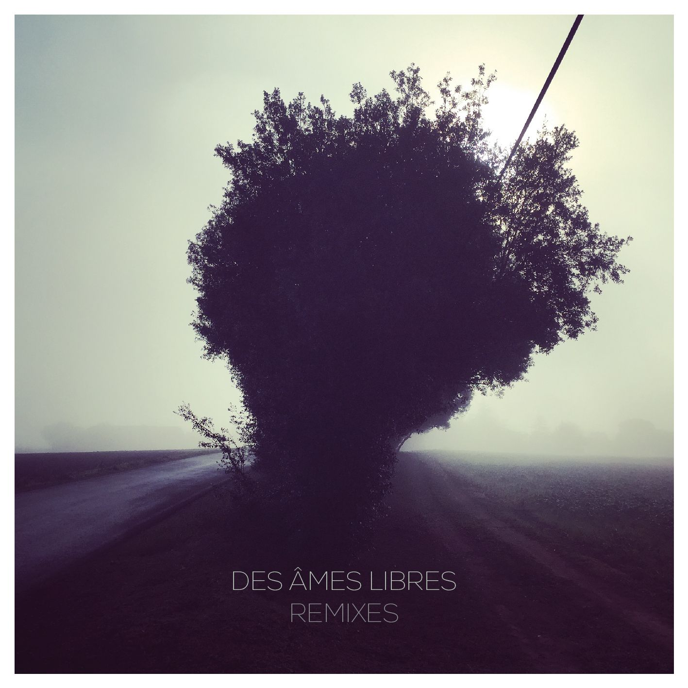 cd_dal_remixes_1.jpg