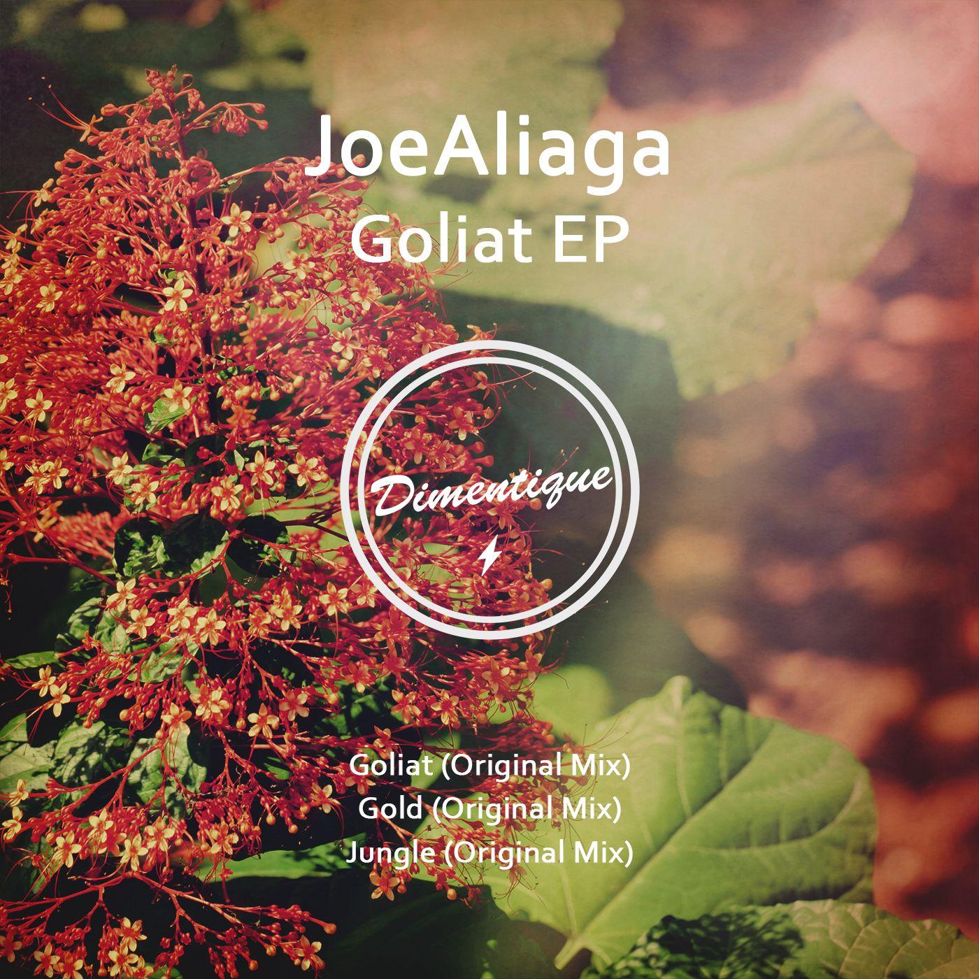 dimentique_new_art_2016_joealiaga_goliat_ep.jpg