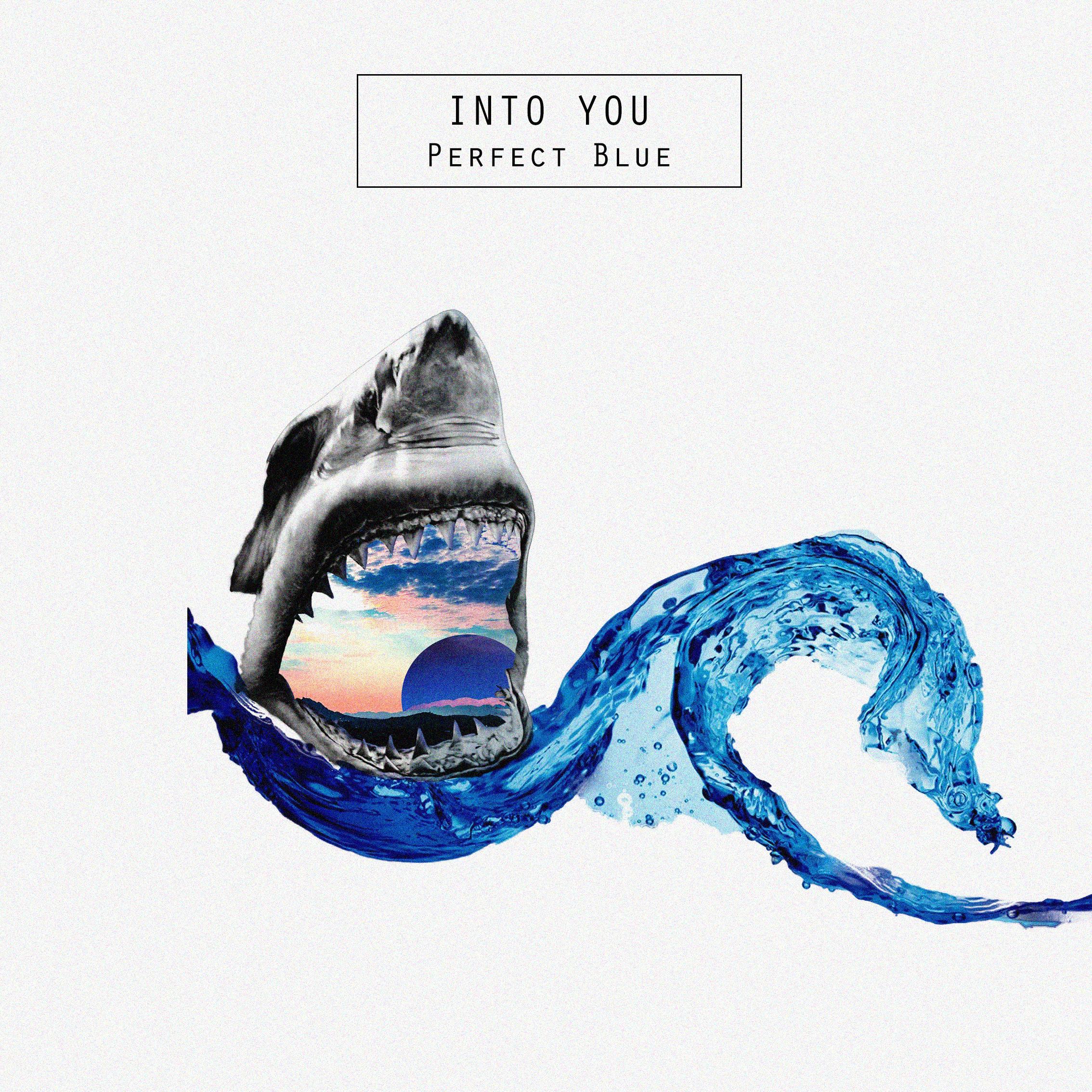 perfect_blu_shark_water_last.jpg
