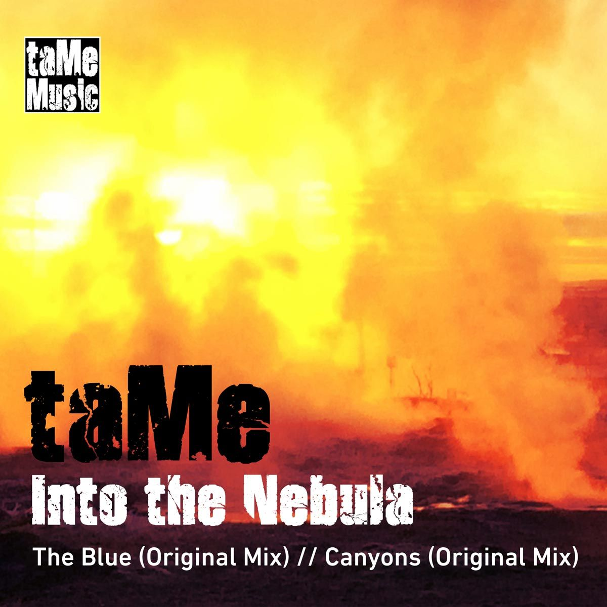 tame008_cover_opt.jpg