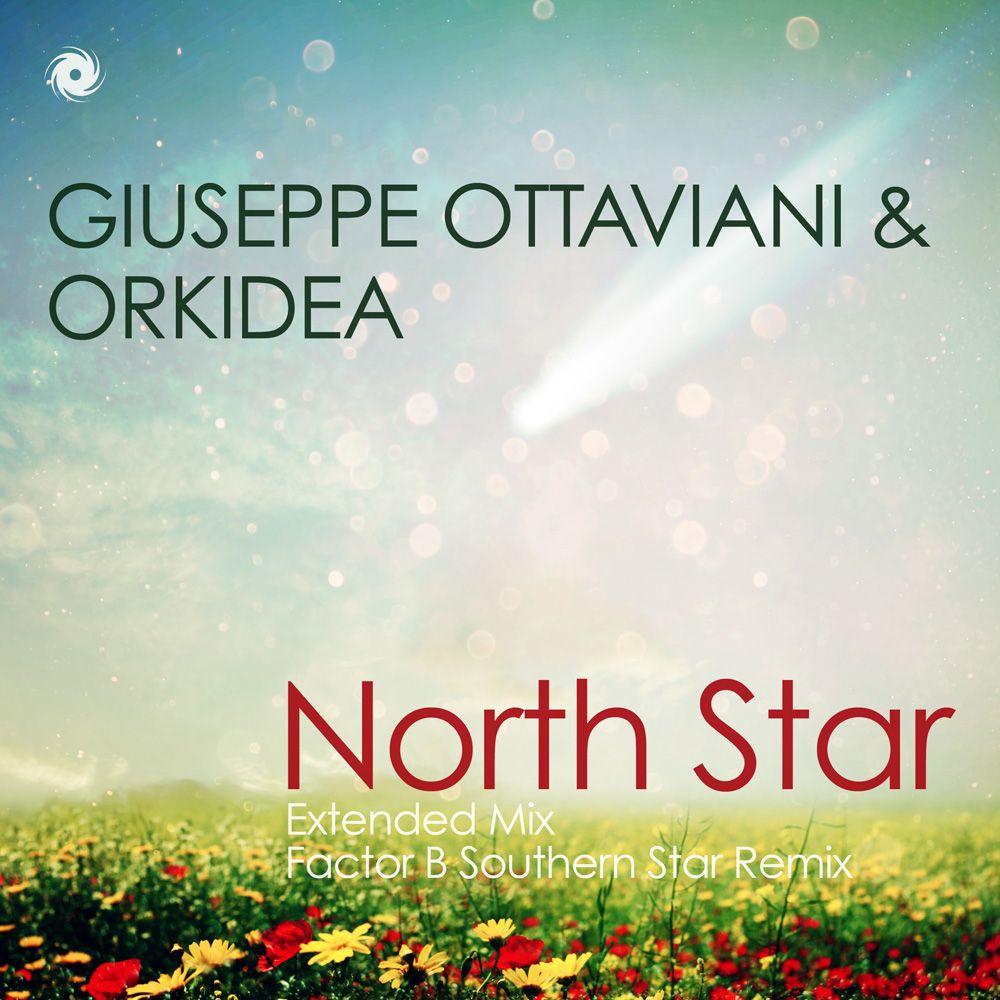 giuseppe-ottaviani-orkidea-north-star.jpg