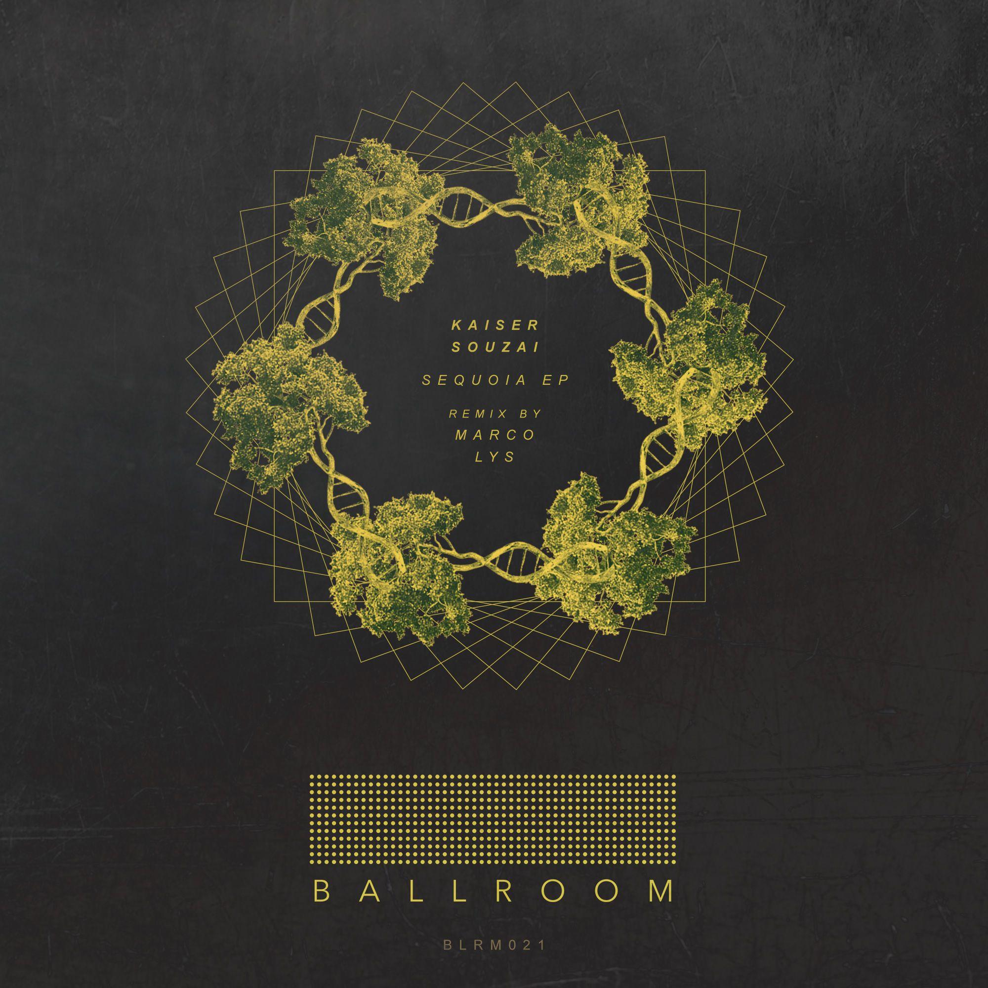 ballroom-kaisersouzai-sequoiaep.jpg