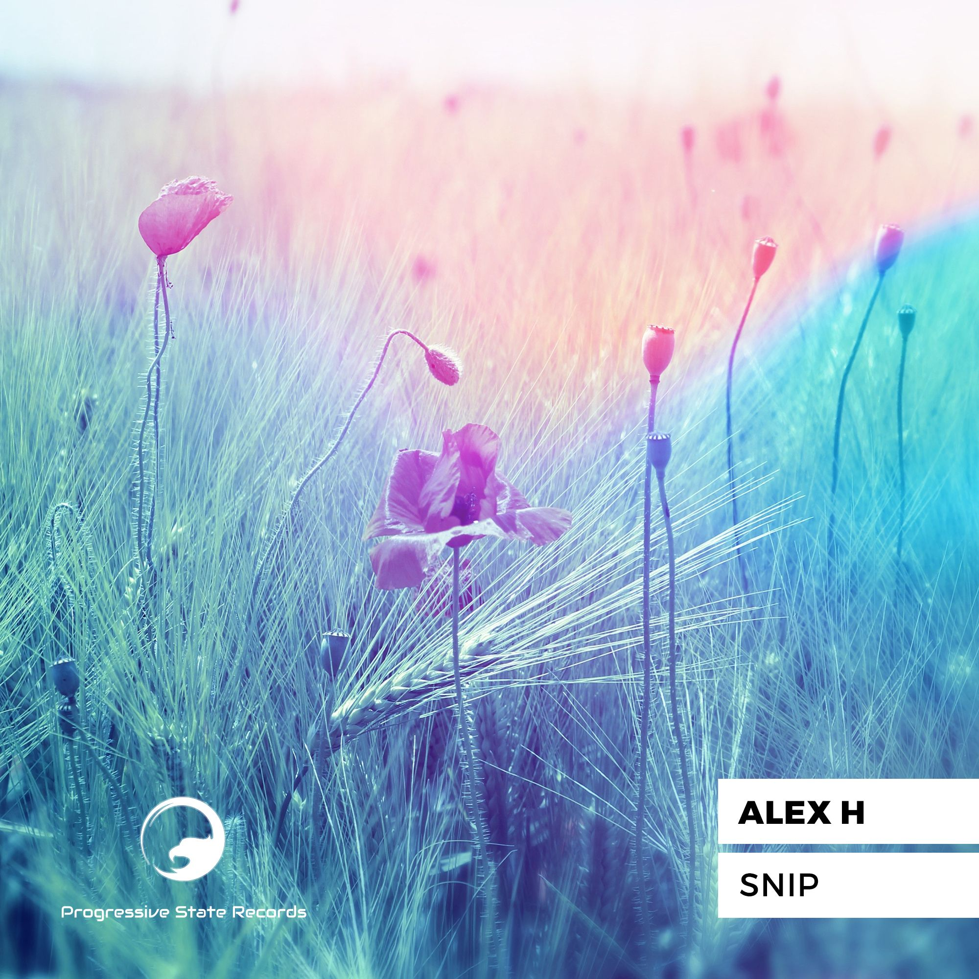 alex_h_-_snip_progressive_state_records.jpg