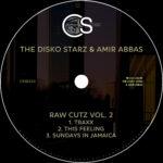 The-Disko-Starz-Amir-Abbas-Raw-2-copy.jpg